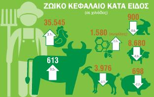 Infographic: Γεωργική Στατιστική Έρευνα 2016
