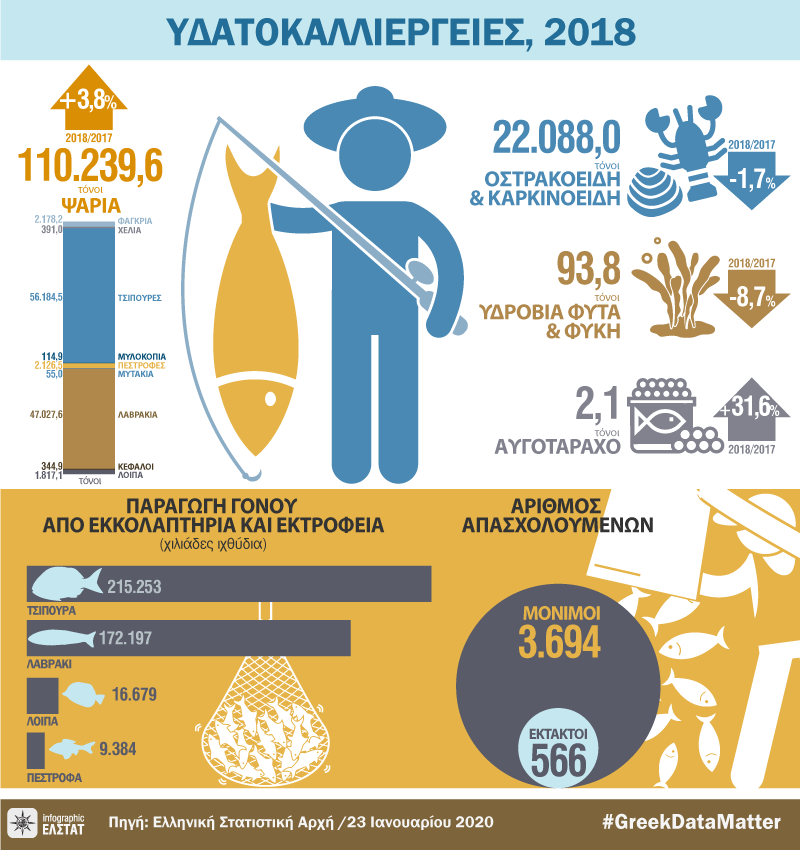 infographic-aquaculture-2018 gr