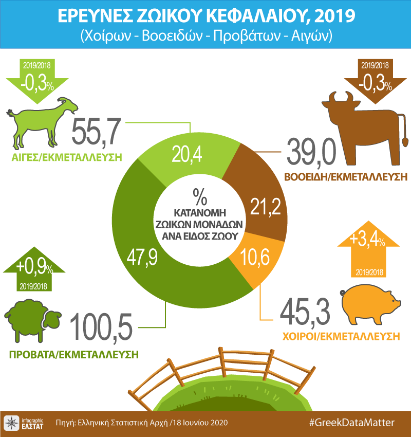 infographic-livestock-surveys-2019 gr